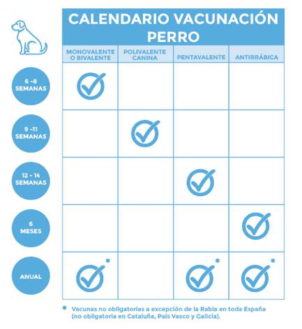 Calendario de vacunas - Kivet